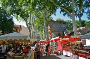 amelie-les-bains-tourisme-location-2